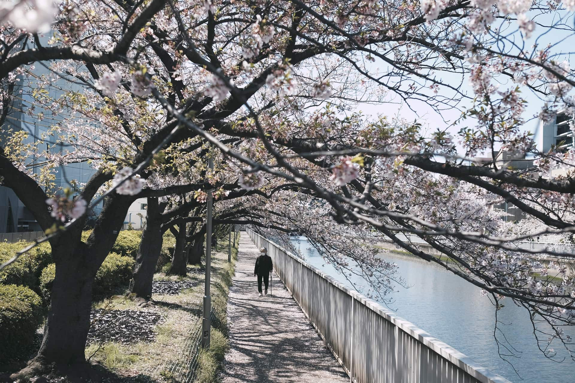 Effortless Fitness: Why there are no gyms in Japan